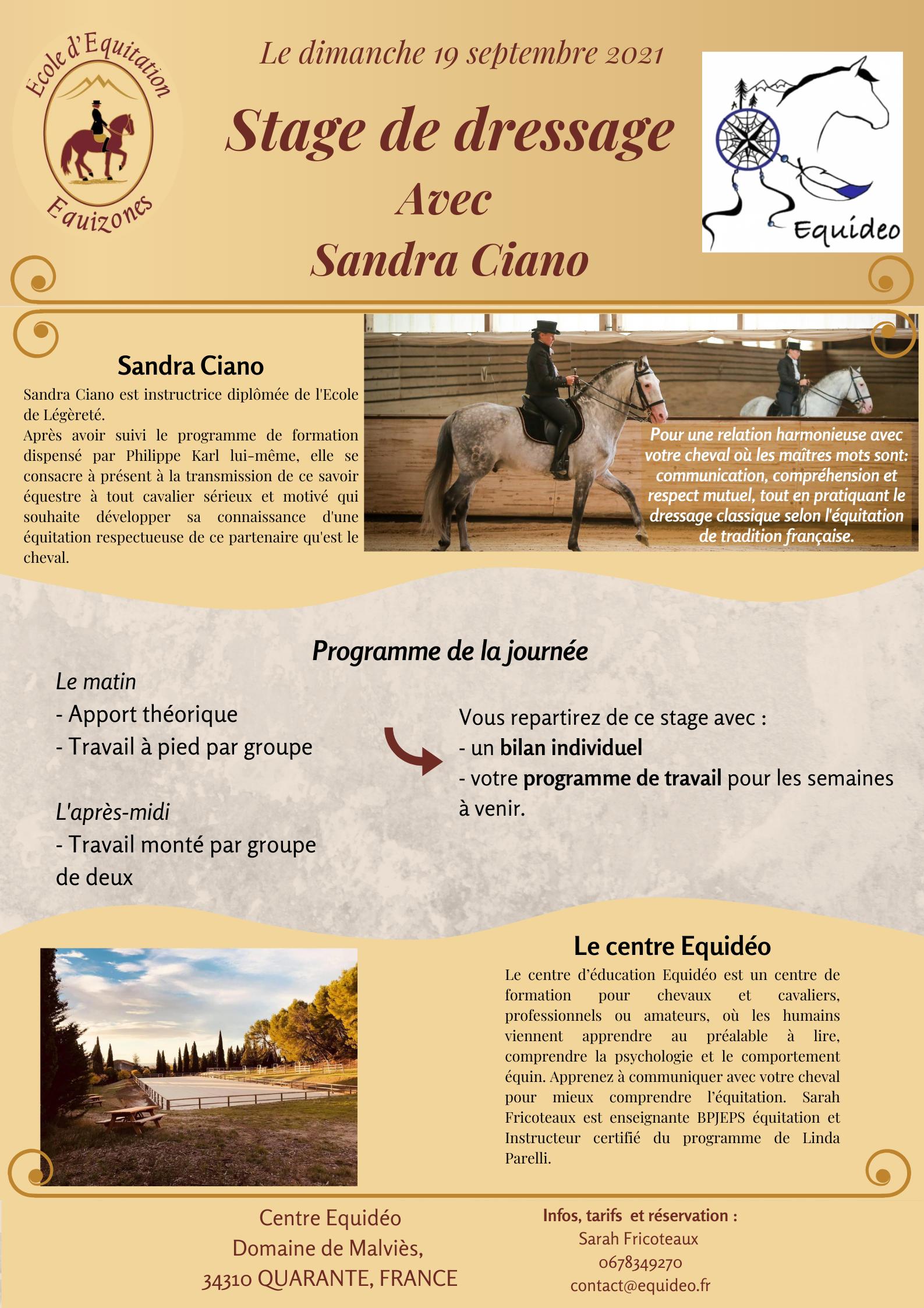 Read more about the article WE finesse et dressage avec Sarah Fricoteaux et Sandra Ciano